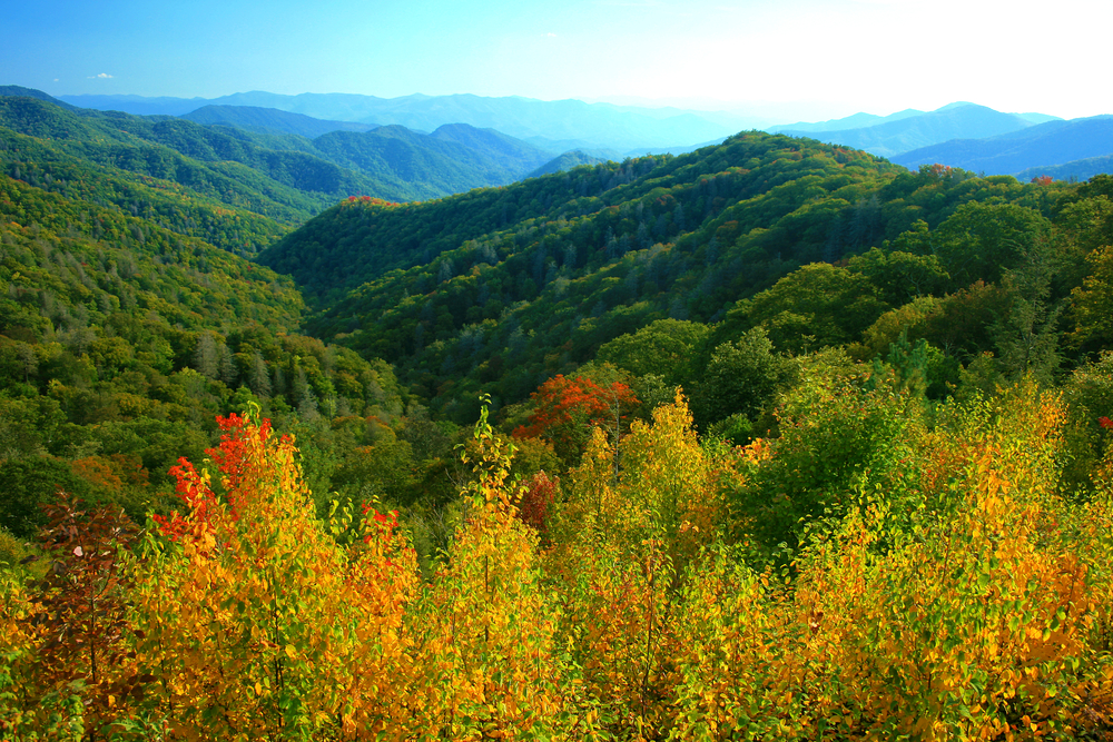 smoky_mountains_in_fall